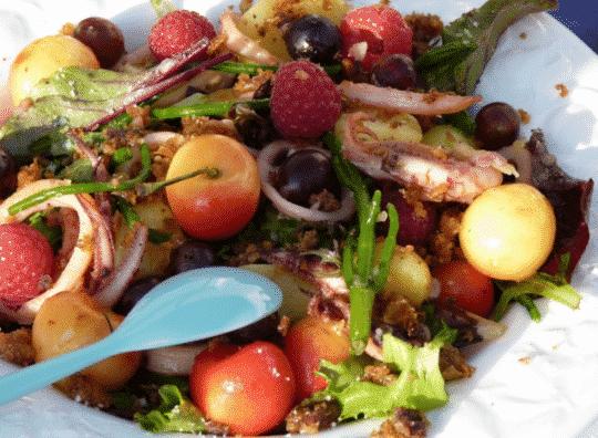 Salade d'encornets salicorne et cerises et cidre rosé Envies de...